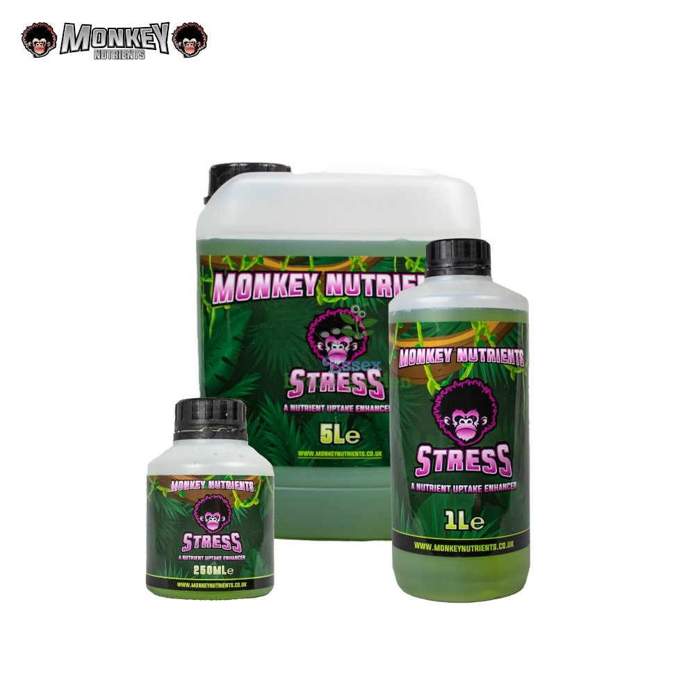 Monkey Stress